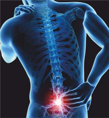 Spine & Spinal Cord Disorder